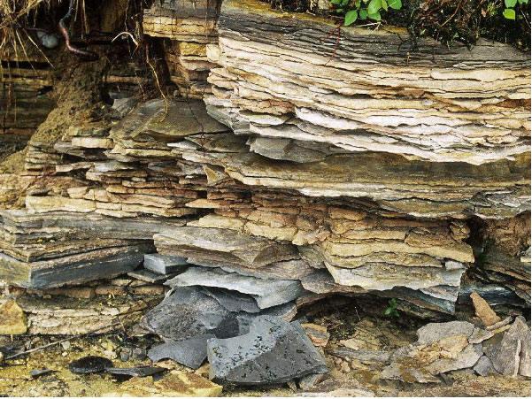 页岩陶粒砂生产线设备有哪些?
